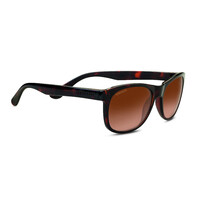 Serengeti Anteo 8671 Shiny Dark Tortoise  Drivers Gradient  Medium/Large