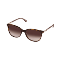 Oroton Estate 1903222-55 Classic Tortoise Brown Gradient